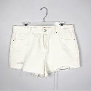 NWT Pacsun High Rise Button Fly Jean Shorts